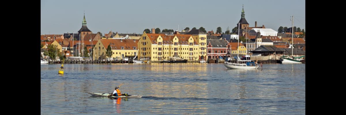 Svendborgs Havn Skyline